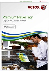 Polyester paper