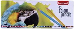 Kleurpotloden Bruynzeel papegaai blik à 45 stuks assorti