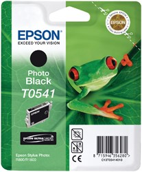 Inktcartridge Epson T0541 zwart