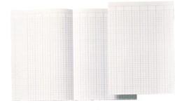 Accountantspapier dubbel A4 14 kolommen 100vel