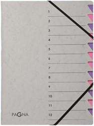 Sorteermap Pagna Easy 12 tabs A4 grijs