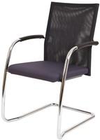 Bezoekersstoel Van Hilten Huislijn BN24 - Oasis Grijs (9114) - Kunststof Vloerglijder met vilt (voor harde ondergrond)